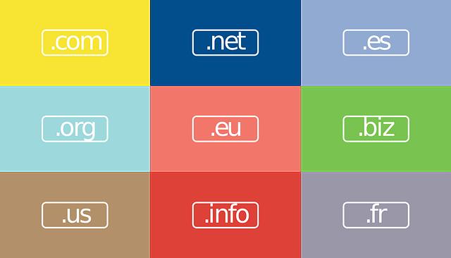 Nombre de dominio para Dummies: Cómo comprar un nombre de dominio